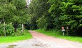 Randonnée Marche SAINT-JEAN-AUX-BOIS - en forêt de Compiègne_2_ruines gallo-romaines de Champlieu_les Petits Monts - Photo 41