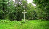 Randonnée Marche SAINT-JEAN-AUX-BOIS - en forêt de Compiègne_2_ruines gallo-romaines de Champlieu_les Petits Monts - Photo 32