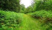 Randonnée Marche SAINT-JEAN-AUX-BOIS - en forêt de Compiègne_2_ruines gallo-romaines de Champlieu_les Petits Monts - Photo 15