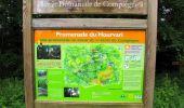 Randonnée Marche SAINT-JEAN-AUX-BOIS - en forêt de Compiègne_2_ruines gallo-romaines de Champlieu_les Petits Monts - Photo 189