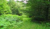 Randonnée Marche SAINT-JEAN-AUX-BOIS - en forêt de Compiègne_2_ruines gallo-romaines de Champlieu_les Petits Monts - Photo 182