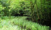 Randonnée Marche SAINT-JEAN-AUX-BOIS - en forêt de Compiègne_2_ruines gallo-romaines de Champlieu_les Petits Monts - Photo 228
