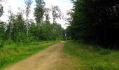 Randonnée Marche SAINT-JEAN-AUX-BOIS - en forêt de Compiègne_2_ruines gallo-romaines de Champlieu_les Petits Monts - Photo 175
