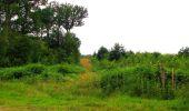 Randonnée Marche SAINT-JEAN-AUX-BOIS - en forêt de Compiègne_2_ruines gallo-romaines de Champlieu_les Petits Monts - Photo 201