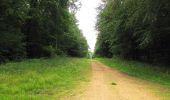 Randonnée Marche SAINT-JEAN-AUX-BOIS - en forêt de Compiègne_2_ruines gallo-romaines de Champlieu_les Petits Monts - Photo 195