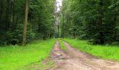 Randonnée Marche SAINT-JEAN-AUX-BOIS - en forêt de Compiègne_2_ruines gallo-romaines de Champlieu_les Petits Monts - Photo 31