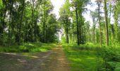 Randonnée Marche SAINT-JEAN-AUX-BOIS - en forêt de Compiègne_2_ruines gallo-romaines de Champlieu_les Petits Monts - Photo 177