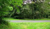 Randonnée Marche SAINT-JEAN-AUX-BOIS - en forêt de Compiègne_2_ruines gallo-romaines de Champlieu_les Petits Monts - Photo 20