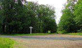 Randonnée Marche SAINT-JEAN-AUX-BOIS - en forêt de Compiègne_2_ruines gallo-romaines de Champlieu_les Petits Monts - Photo 184