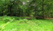 Randonnée Marche SAINT-JEAN-AUX-BOIS - en forêt de Compiègne_2_ruines gallo-romaines de Champlieu_les Petits Monts - Photo 35