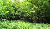 Randonnée Marche SAINT-JEAN-AUX-BOIS - en forêt de Compiègne_2_ruines gallo-romaines de Champlieu_les Petits Monts - Photo 227