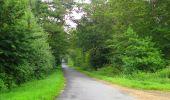 Randonnée Marche SAINT-JEAN-AUX-BOIS - en forêt de Compiègne_2_ruines gallo-romaines de Champlieu_les Petits Monts - Photo 199