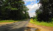 Randonnée Marche SAINT-JEAN-AUX-BOIS - en forêt de Compiègne_2_ruines gallo-romaines de Champlieu_les Petits Monts - Photo 186