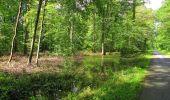 Randonnée Marche SAINT-JEAN-AUX-BOIS - en forêt de Compiègne_2_ruines gallo-romaines de Champlieu_les Petits Monts - Photo 159