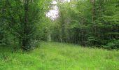 Randonnée Marche SAINT-JEAN-AUX-BOIS - en forêt de Compiègne_2_ruines gallo-romaines de Champlieu_les Petits Monts - Photo 193