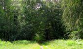 Randonnée Marche SAINT-JEAN-AUX-BOIS - en forêt de Compiègne_2_ruines gallo-romaines de Champlieu_les Petits Monts - Photo 126
