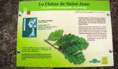 Randonnée Marche SAINT-JEAN-AUX-BOIS - en forêt de Compiègne_2_ruines gallo-romaines de Champlieu_les Petits Monts - Photo 262