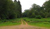 Randonnée Marche SAINT-JEAN-AUX-BOIS - en forêt de Compiègne_2_ruines gallo-romaines de Champlieu_les Petits Monts - Photo 200