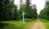 Randonnée Marche SAINT-JEAN-AUX-BOIS - en forêt de Compiègne_2_ruines gallo-romaines de Champlieu_les Petits Monts - Photo 173