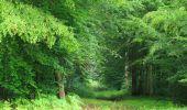Randonnée Marche SAINT-JEAN-AUX-BOIS - en forêt de Compiègne_2_ruines gallo-romaines de Champlieu_les Petits Monts - Photo 162