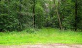 Randonnée Marche SAINT-JEAN-AUX-BOIS - en forêt de Compiègne_2_ruines gallo-romaines de Champlieu_les Petits Monts - Photo 29