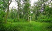 Trail Walk SAINT-JEAN-AUX-BOIS - en forêt de Compiègne_33_12_2019_les Tournantes de l'étang Saint-Jean et des Prés Saint-Jean - Photo 186