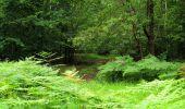 Randonnée Marche SAINT-JEAN-AUX-BOIS - en forêt de Compiègne_2_ruines gallo-romaines de Champlieu_les Petits Monts - Photo 36