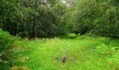 Randonnée Marche SAINT-JEAN-AUX-BOIS - en forêt de Compiègne_2_ruines gallo-romaines de Champlieu_les Petits Monts - Photo 14