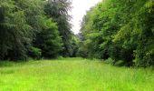 Randonnée Marche SAINT-JEAN-AUX-BOIS - en forêt de Compiègne_2_ruines gallo-romaines de Champlieu_les Petits Monts - Photo 38