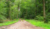 Randonnée Marche SAINT-JEAN-AUX-BOIS - en forêt de Compiègne_2_ruines gallo-romaines de Champlieu_les Petits Monts - Photo 28
