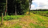 Randonnée Marche SAINT-JEAN-AUX-BOIS - en forêt de Compiègne_2_ruines gallo-romaines de Champlieu_les Petits Monts - Photo 93