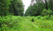 Randonnée Marche SAINT-JEAN-AUX-BOIS - en forêt de Compiègne_2_ruines gallo-romaines de Champlieu_les Petits Monts - Photo 143