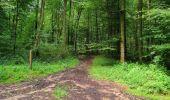 Randonnée Marche SAINT-JEAN-AUX-BOIS - en forêt de Compiègne_2_ruines gallo-romaines de Champlieu_les Petits Monts - Photo 100