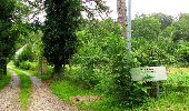 Randonnée Marche SAINT-JEAN-AUX-BOIS - en forêt de Compiègne_2_ruines gallo-romaines de Champlieu_les Petits Monts - Photo 21