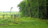 Randonnée Marche SAINT-JEAN-AUX-BOIS - en forêt de Compiègne_2_ruines gallo-romaines de Champlieu_les Petits Monts - Photo 226