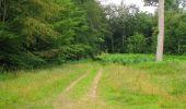 Randonnée Marche SAINT-JEAN-AUX-BOIS - en forêt de Compiègne_2_ruines gallo-romaines de Champlieu_les Petits Monts - Photo 196
