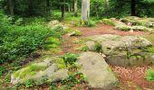Randonnée Marche SAINT-JEAN-AUX-BOIS - en forêt de Compiègne_2_ruines gallo-romaines de Champlieu_les Petits Monts - Photo 153