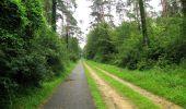 Randonnée Marche SAINT-JEAN-AUX-BOIS - en forêt de Compiègne_2_ruines gallo-romaines de Champlieu_les Petits Monts - Photo 248