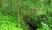 Randonnée Marche SAINT-JEAN-AUX-BOIS - en forêt de Compiègne_2_ruines gallo-romaines de Champlieu_les Petits Monts - Photo 235