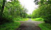 Randonnée Marche SAINT-JEAN-AUX-BOIS - en forêt de Compiègne_2_ruines gallo-romaines de Champlieu_les Petits Monts - Photo 244