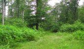 Randonnée Marche SAINT-JEAN-AUX-BOIS - en forêt de Compiègne_2_ruines gallo-romaines de Champlieu_les Petits Monts - Photo 251
