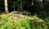 Randonnée Marche SAINT-JEAN-AUX-BOIS - en forêt de Compiègne_2_ruines gallo-romaines de Champlieu_les Petits Monts - Photo 150