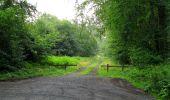 Randonnée Marche SAINT-JEAN-AUX-BOIS - en forêt de Compiègne_2_ruines gallo-romaines de Champlieu_les Petits Monts - Photo 239
