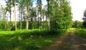 Randonnée Marche SAINT-JEAN-AUX-BOIS - en forêt de Compiègne_2_ruines gallo-romaines de Champlieu_les Petits Monts - Photo 180