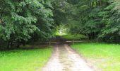 Randonnée Marche SAINT-JEAN-AUX-BOIS - en forêt de Compiègne_2_ruines gallo-romaines de Champlieu_les Petits Monts - Photo 211
