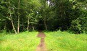 Randonnée Marche SAINT-JEAN-AUX-BOIS - en forêt de Compiègne_2_ruines gallo-romaines de Champlieu_les Petits Monts - Photo 219