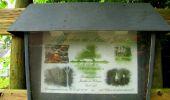 Randonnée Marche SAINT-JEAN-AUX-BOIS - en forêt de Compiègne_2_ruines gallo-romaines de Champlieu_les Petits Monts - Photo 1