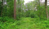 Randonnée Marche SAINT-JEAN-AUX-BOIS - en forêt de Compiègne_2_ruines gallo-romaines de Champlieu_les Petits Monts - Photo 250