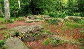 Randonnée Marche SAINT-JEAN-AUX-BOIS - en forêt de Compiègne_2_ruines gallo-romaines de Champlieu_les Petits Monts - Photo 152