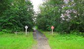 Randonnée Marche SAINT-JEAN-AUX-BOIS - en forêt de Compiègne_2_ruines gallo-romaines de Champlieu_les Petits Monts - Photo 223